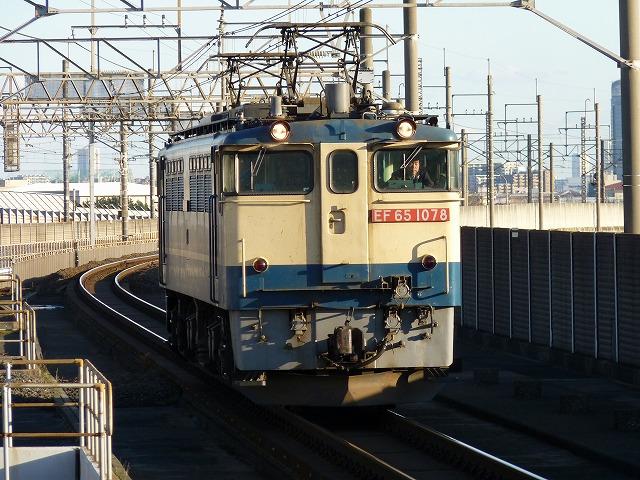 P1110367.jpg
