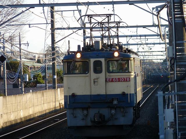 P1110397.jpg
