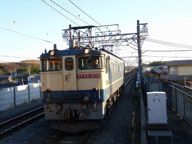 P1110398.jpg