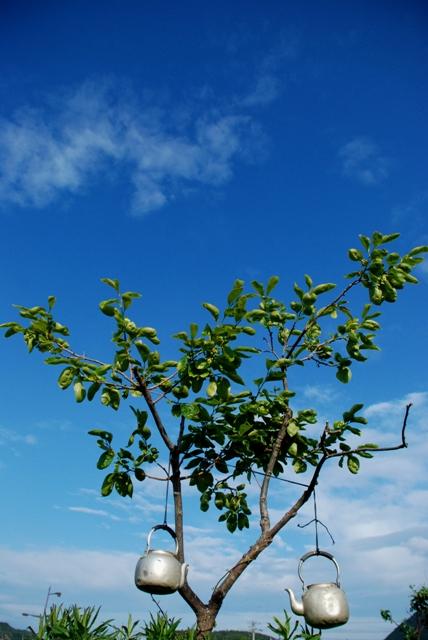 やかんと柿の木