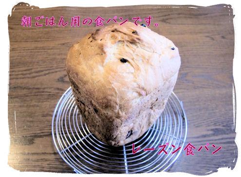 レーズンHB食パン