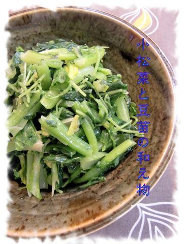 小松菜 豆苗 この組み合わせは美味しい!