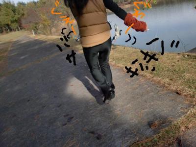 鴨を蹴散らす