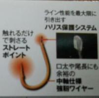 DSC_0132-1.jpg