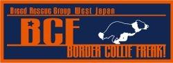 BCF_20100526012128.jpg