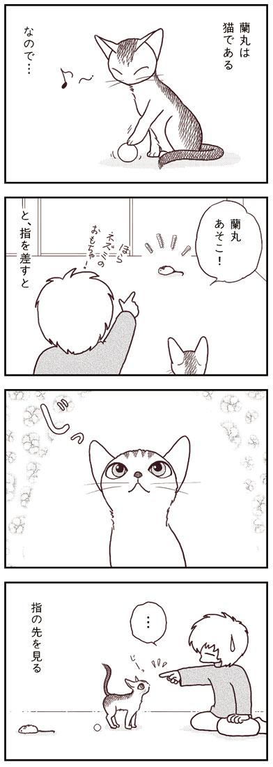 ranmaru_038_1.jpg
