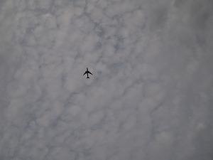 20101012_03.jpg