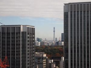 20101124_03.jpg