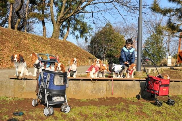 2010.2.28(横浜・家康の会) 161