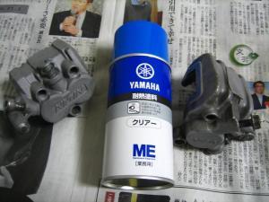 IMG_5460.jpg