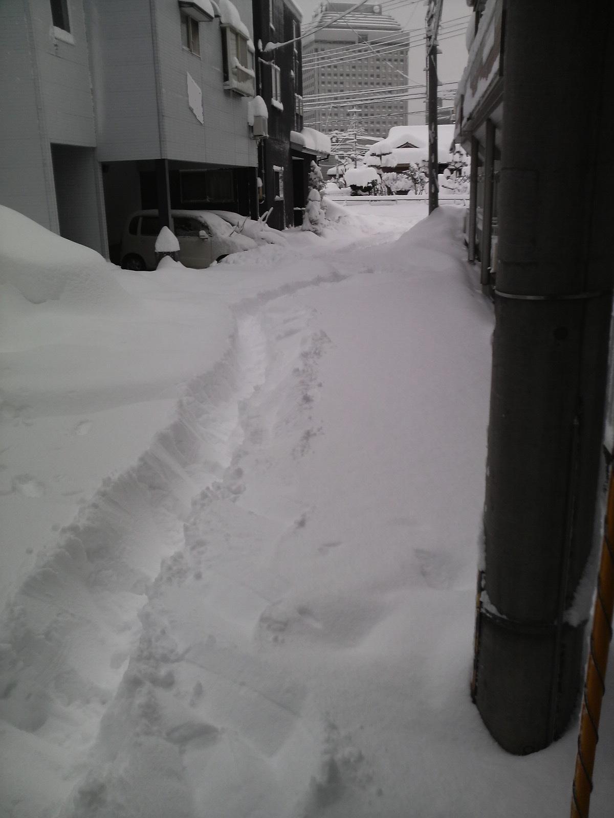 雪……スゴすぎです。