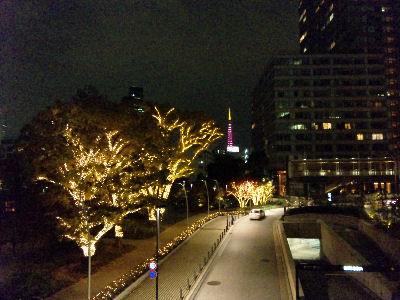 ミッドタウンから眺めるイルミネーションと東京タワー
