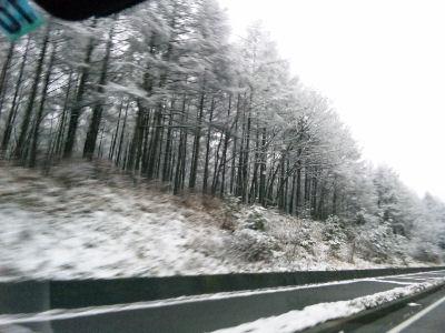雪の清里-野辺山間'09