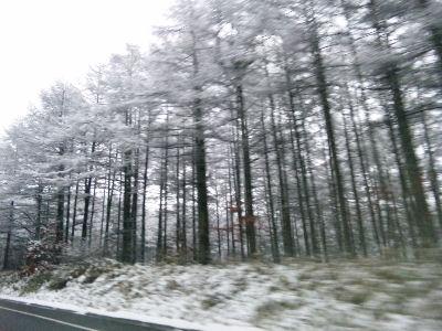 雪の野辺山-清里間'09
