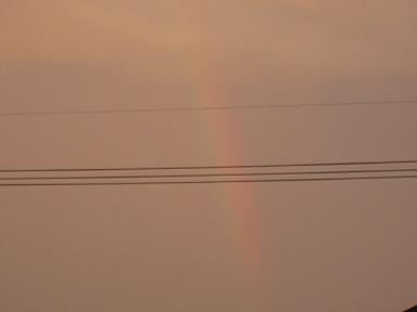 虹が見れたよ(≧▽≦)♪