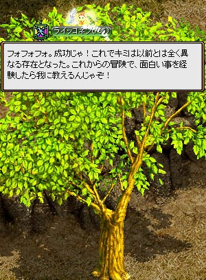 13_02_16_5.jpg