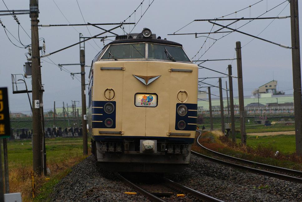 DSC02596.jpg