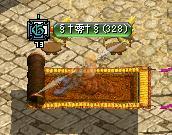 7 千日紅