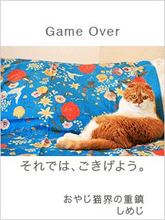 おしゃべり猫5