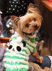 RATAさんセーター