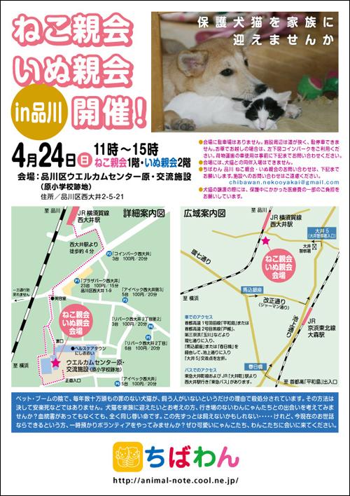 nekoinuoyakai20110424_poster.jpg