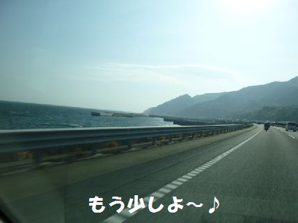 a_20110228064145.jpg