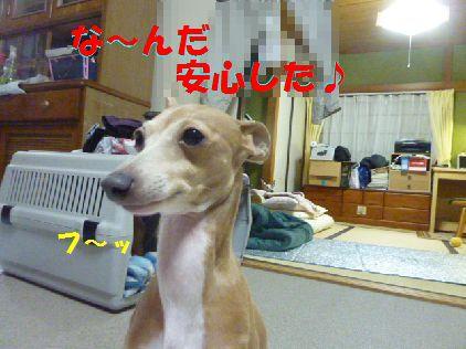 b_20101231083320.jpg