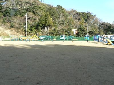 P1490747s.jpg