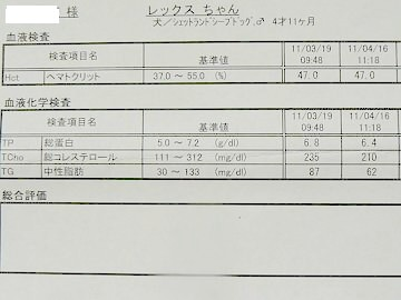 P1510361s.jpg