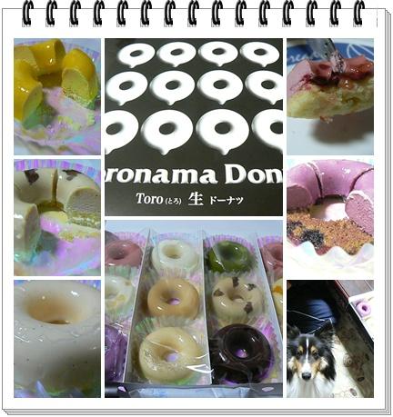 toronamaD.jpg