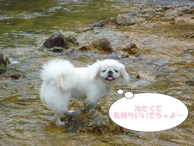 川遊び1A