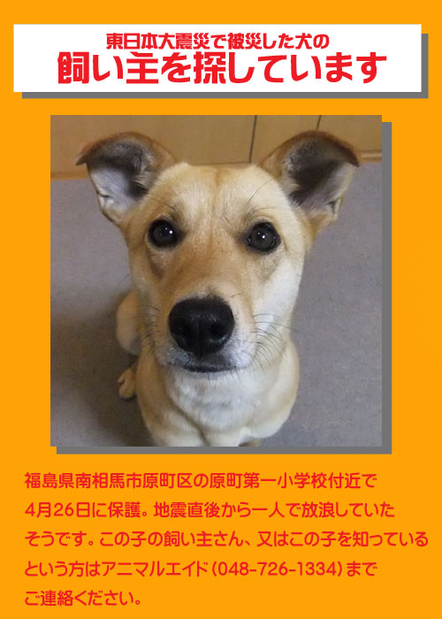 satsuki-top2.jpg