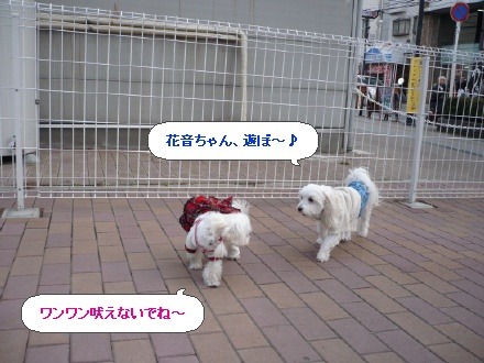 image3083459.jpg