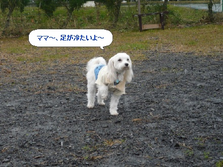 image3100353.jpg