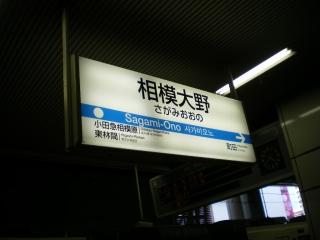 IMGP2033.jpg