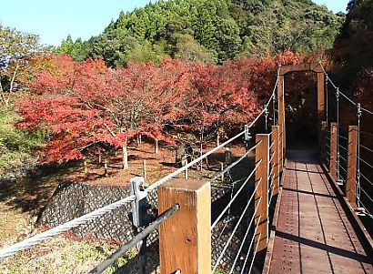滝ノ谷不動峡-2