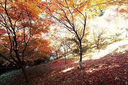 滝ノ谷不動峡-4