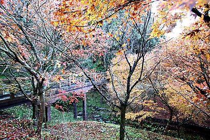 滝ノ谷不動峡-5