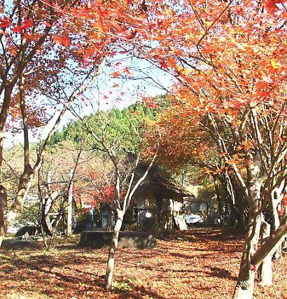 滝ノ谷不動峡-8