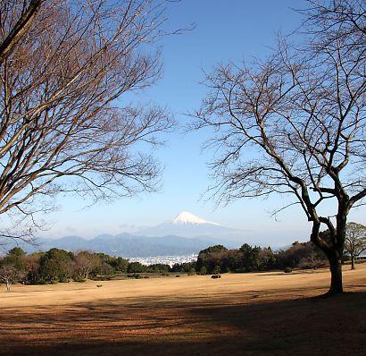 日本平&富士山-1