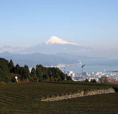 日本平&富士山-5