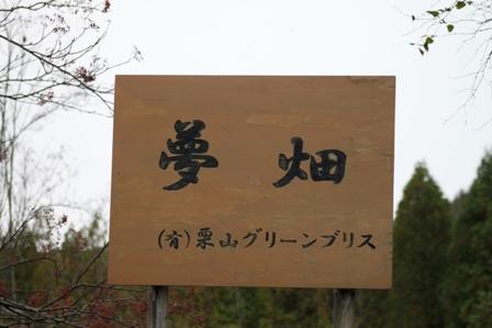003-20101010-016.jpg