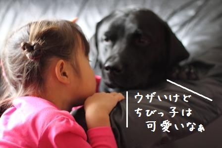 008-20100923-009.jpg