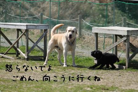 20100314-05.jpg