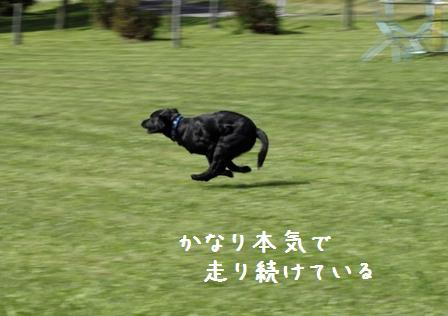 20100924-009.jpg