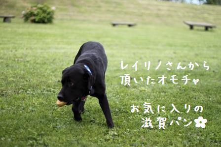 20100924-010.jpg