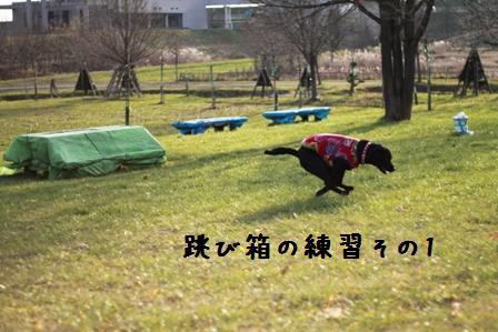 20101120-005.jpg