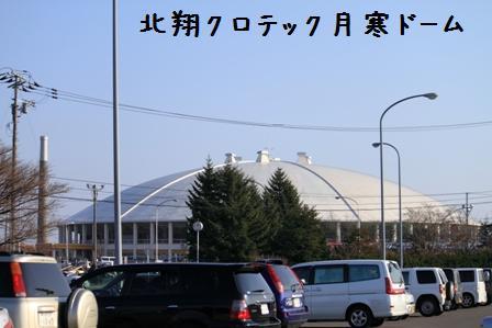 20101121-001.jpg