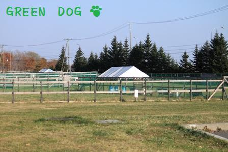 20101121-002.jpg