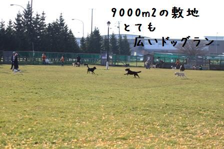 20101121-003.jpg